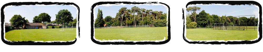 onder sportkampen - sportveld